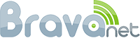 Bravanet Web Developer